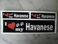 havanese-sticker-i-love-my-kl