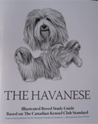 the havanese kl